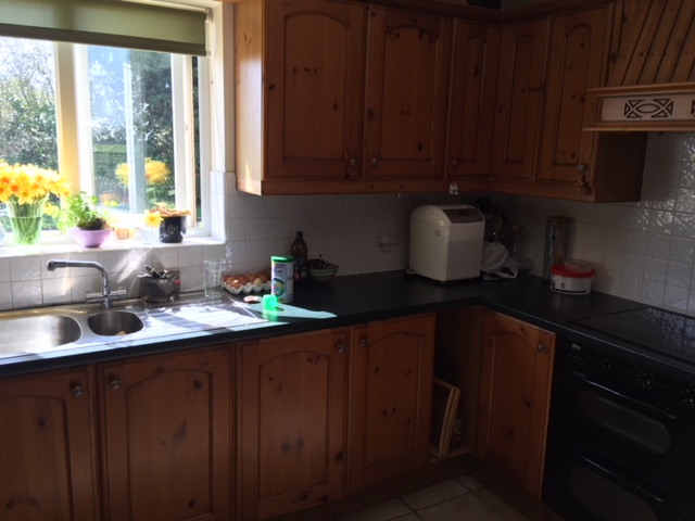 Little Greene Painted Kitchen before1